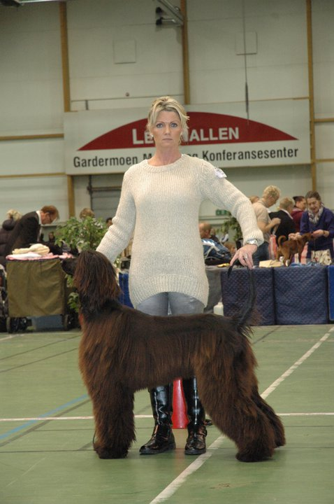 Diva wins CAC in Norway Oct 2010
